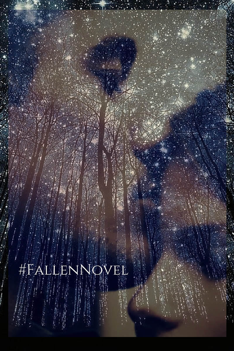 FallenNovel - first night, twinkling stars, forehead kiss